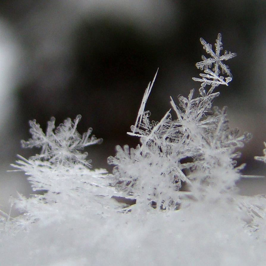 _snowflakes__by_candymax